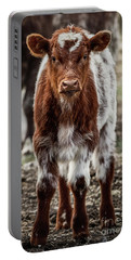 Portable Battery Charger featuring the photograph Spring Baby by Brad Allen Fine Art