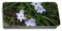 Spring Beauties Portable Battery Charger