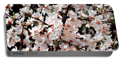Portable Battery Charger featuring the photograph Spring Beauties by Sheila Brown