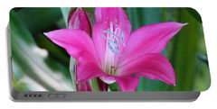 Portable Battery Charger featuring the photograph Spring Blooms by John Glass