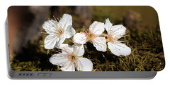Portable Battery Charger featuring the photograph Spring Blossoms On Moss by Sheila Brown
