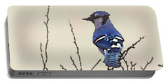Spring Bluejay Portable Battery Charger