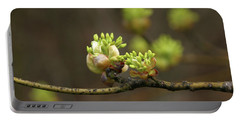 Spring Buds 9365 H_2 Portable Battery Charger