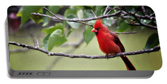 Portable Battery Charger featuring the photograph Spring Cardinal by Lana Trussell
