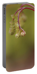 Portable Battery Charger featuring the photograph Spring Coming 2017 by Jeff Burgess