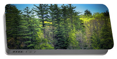 Spring Day At Old Forge Pond Portable Battery Charger by David Patterson