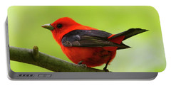 Spring Flame - Scarlet Tanager Portable Battery Charger