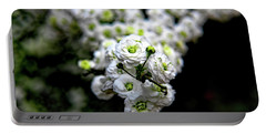 Spring Flowering Tree Portable Battery Charger by Elijah Knight