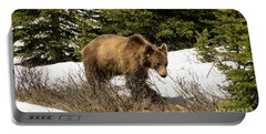 Spring Grizzly Portable Battery Charger
