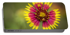 Spring Indian Blanket Portable Battery Charger