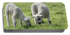 Portable Battery Charger featuring the photograph Spring Lambs by Scott Carruthers