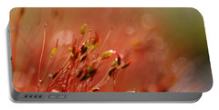 Portable Battery Charger featuring the photograph Spring Macro3 by Jeff Burgess