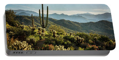 Portable Battery Charger featuring the photograph Spring Morning In The Sonoran  by Saija Lehtonen