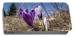 Spring On Bule Portable Battery Charger by Nick Mares