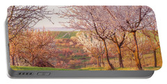 Portable Battery Charger featuring the photograph Spring Orchard With Morring Sun by Jenny Rainbow