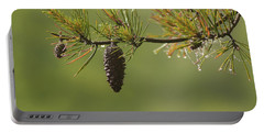Spring Rain And Pinecone Portable Battery Charger
