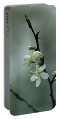 Spring Rain Mood Portable Battery Charger