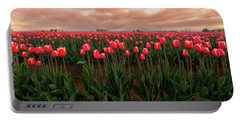 Portable Battery Charger featuring the photograph Spring Rainbow by Ryan Manuel