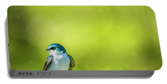Spring Swallow Portable Battery Charger