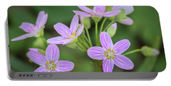 Portable Battery Charger featuring the photograph Spring Vibe by Bill Pevlor