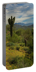 Spring View Of Four Peaks Portable Battery Charger