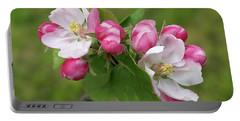 Springtime Apple Blossom Portable Battery Charger by Gill Billington