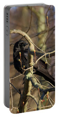 Portable Battery Charger featuring the photograph Springtime Crow by Bill Wakeley