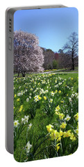 Portable Battery Charger featuring the photograph Springtime In The Park by Liza Eckardt