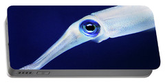 Portable Battery Charger featuring the photograph Squid by Anthony Jones