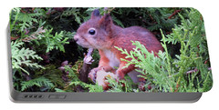 Squirrel 3 Portable Battery Charger