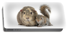 Squirrel And Guinea Portable Battery Charger