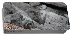 Portable Battery Charger featuring the photograph Squirrel At Sparks Lake Do Not Make Me Jump by Marie Neder