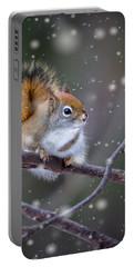 Squirrel Balancing Act Portable Battery Charger