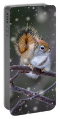Squirrel Balancing Act Portable Battery Charger