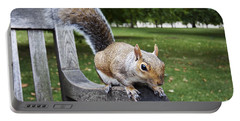 Squirrel Bench Portable Battery Charger