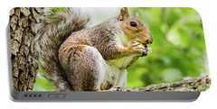 Squirrel Eating On A Branch Portable Battery Charger