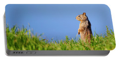 Squirrel Look-out Portable Battery Charger