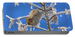 Portable Battery Charger featuring the photograph Squirrel On Icy Branches by Doris Potter