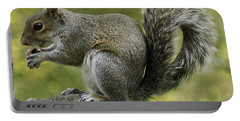 Squirrel, On The Hop Portable Battery Charger