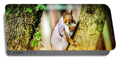 Portable Battery Charger featuring the photograph Squirrel Pose  by Cliff Norton