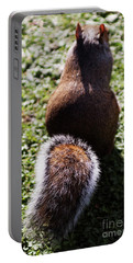 Squirrel S Back Portable Battery Charger