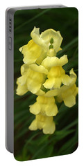St. Johns Flower 866 Portable Battery Charger