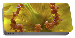 St Johns Wort Flower Centre Portable Battery Charger