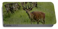 Stag Of The Herd. Portable Battery Charger