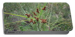 Starburst Of Nature Portable Battery Charger