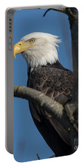 Staredown By Eagle  Portable Battery Charger