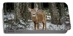 Staring Buck Portable Battery Charger
