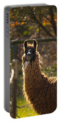 Staring Llama Portable Battery Charger