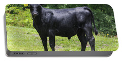 Staring Steer Portable Battery Charger