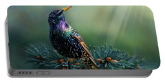 Starling Portable Battery Charger